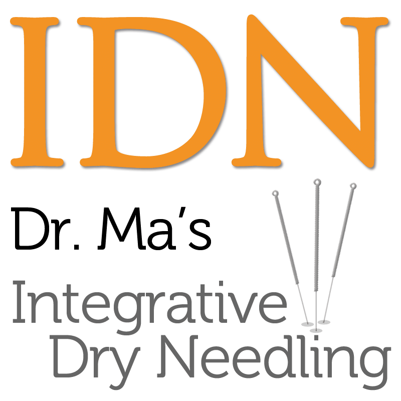 Integrative Dry Needling Institute